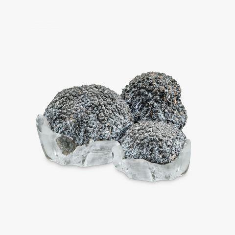 tartufo-congelato