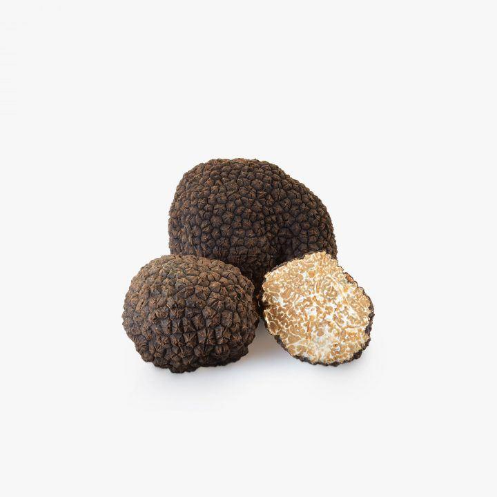 fresh-black-summer-truffle-Tartuber